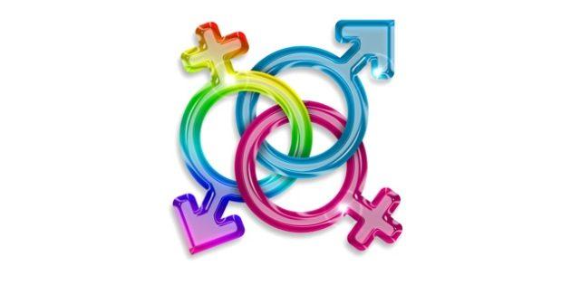 Gay Lesbian Role-play